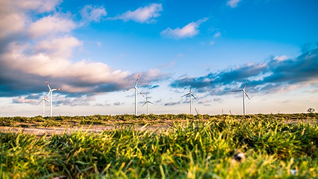 5 Ways Tech Is Driving Sustainability